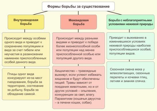 Межвидовые отношения организмов